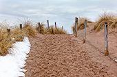 Trilha da praia de areia