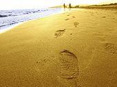 Run In Summer