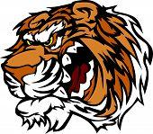Tiger Cartoon Mascot With Snarling Teeth Vector Illustration