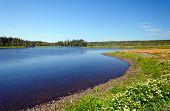 Lagoa costeira um dia de Verão