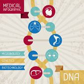 Medical infographic DNA.