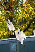Miedo fantasmas para decoraciones de Halloween