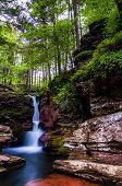 Adam's Falls And Tall Trees In Rickett's Glen State Park, Pennsylvania.