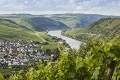 The Mosel Valley