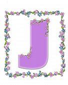 Alphabet Daisy Fair Lilac J