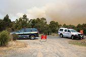 Bushfires in Tasmania