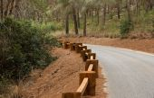Road in the forest with wooden guardrail in perspective