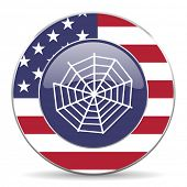 spider web american icon