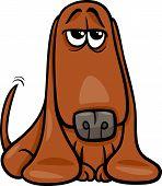 Funny Basset Dog Cartoon Illustration