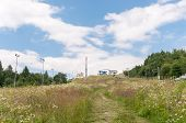picture of zar  - Mountainside of Zar Mountain in mountain range of Little Beskids - JPG