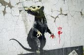 Banksy Graffiti Rat