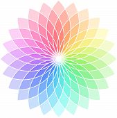 image of color wheel  - Circle with samples of colours in the form of a flower about many petals - JPG