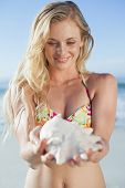 Pretty blonde in bikini holding conch on the beach on a sunny day