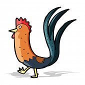 stock photo of cockerels  - cartoon cockerel - JPG