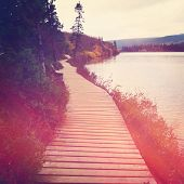 Board walk or path around lake with instagram effect