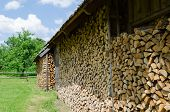 Wood Arranged In Shed Village Outdoor
