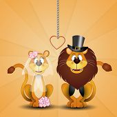 Lion And Lioness Just Married