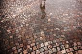 Street With Cobble Stones And Puddle After Rain