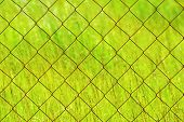 Texture Rusty Chain-link On A Green Background