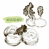 stock photo of kohlrabi  - Kohlraby - JPG