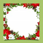 Christmas card with fir branches, holly, poinsettia and cones. Vector eps-10.