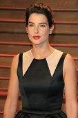 LOS ANGELES - MAR 2:  Cobie Smulders at the 2014 Vanity Fair Oscar Party at the Sunset Boulevard on March 2, 2014 in West Hollywood, CA