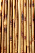 picture of bamboo  - Close up beige Bamboo background - JPG