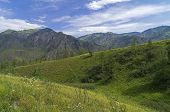 Altai Mountains.