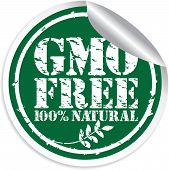 Gmo Free 100% Natural Grunge Sticker, Vector Illustration