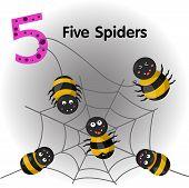 Illustrator of number five spiders