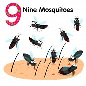 Illustrator of number nine mosquitoes