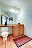 Bathroom Vanity Cabinet With Counter Top And Mirror