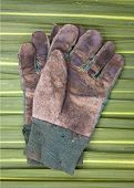 Old Gardening Gloves