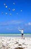 Man on the beach feeding sea gulls.