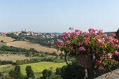 Mondavio (marches, Italy)