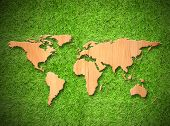 Wood World Map On Green Grass