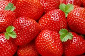 Starwberry Closeup