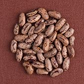 pic of pinto bean  - Top view of circle of pinto beans against red vinyl background - JPG