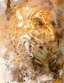 picture of tiger cub  - tiger collage on color abstract background rust structure wildlife animals - JPG