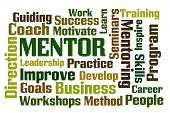 picture of mentoring  - Mentor word cloud on white background - JPG