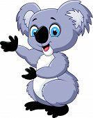 stock photo of koalas  - Vector illustration of Happy cartoon koala isolated on white background - JPG