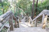picture of stairway  - the stairway and banister for going up and down the hill in rural thailand - JPG