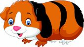 picture of guinea pig  - Vector illustration of Cartoon cute guinea pig - JPG