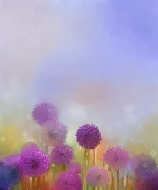 picture of pastel  - Pastel colors light purple onion flower in the meadows - JPG
