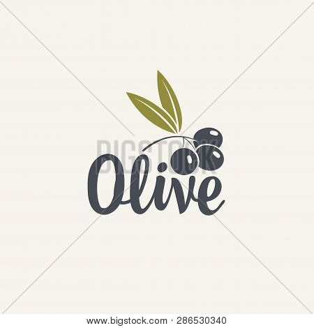 Olive Vector Icon Or Logo