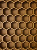 The Hive Wall