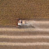 Harvester Machine Working In Field . Combine Harvester Agriculture Machine Harvesting Golden Ripe Wh poster