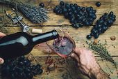 Wine Maker Pouring Red Wine (bio) For Tasting. Red Wine Tasting In A Wine Glass With Grapes, Nuts An poster