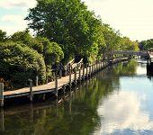 The Boardman River