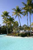 Tropical Resort Pool, Port Douglas, Queensland